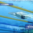 Amazingly Smooth Swimmer Sun Yang